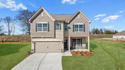 Anderson Single Family Home For Sale: 406 Willow Grove Way