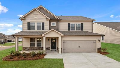 Anderson Single Family Home For Sale: 301 Maple Forge Way