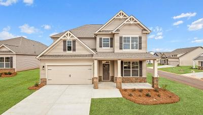 Anderson SC Single Family Home For Sale: $293,159