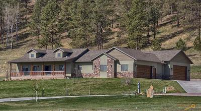 Rapid City Single Family Home For Sale: 3002 Silver Aspen Pl