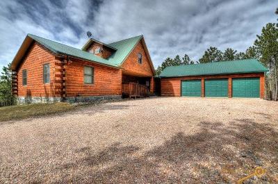 Hill City Single Family Home For Sale: 12276 Gilt Crest Pl