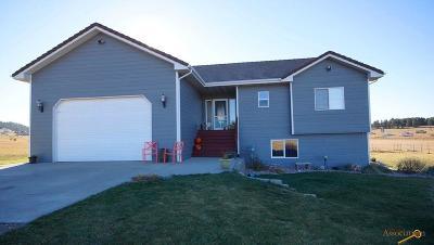 Black Hawk Single Family Home For Sale: 11225 Quaal Rd