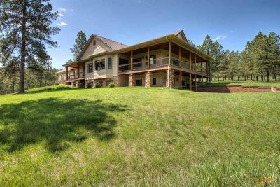 Rapid City Single Family Home For Sale: 23431 Sand Lane