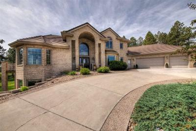 Rapid City Single Family Home For Sale: 5304 Carriage Hills Pl