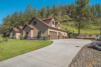 Hill City Single Family Home U/C Take Back Ups: 150 Minor Lake Circle