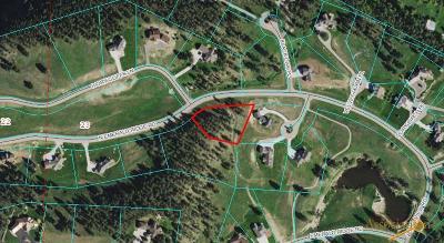 Rapid City, Box Elder, Piedmont, Black Hawk, Hermosa, Summerset, New Underwood Residential Lots & Land For Sale: Lot 29 N Emerald Ridge Rd