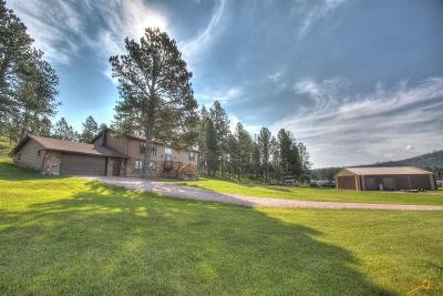 Custer Single Family Home For Sale: 25240 Lower French Creek Rd