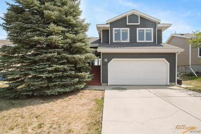 Rapid City Single Family Home For Sale: 4020 Prairie View Dr