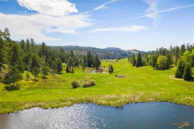 Residential Lots & Land For Sale: 24001 Medicine Mountain Rd