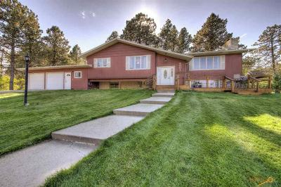 Rapid City Single Family Home For Sale: 4001 Canyon Dr