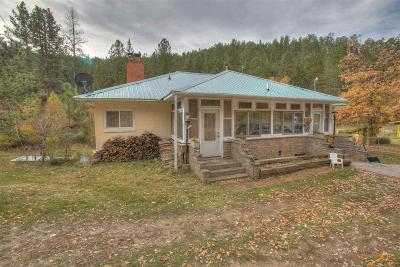 Keystone Single Family Home For Sale: 13029 Old Hill City Rd