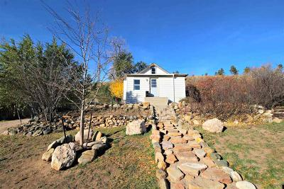 Single Family Home For Sale: 1015 Silver St