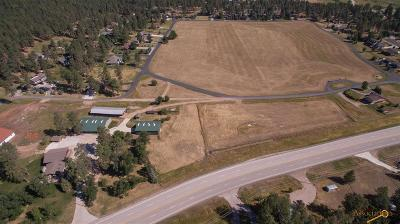 Sturgis Residential Lots & Land For Sale: Tbd 76 Loop