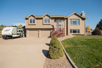 Rapid City Single Family Home For Sale: 5520 Bitter Root Ct