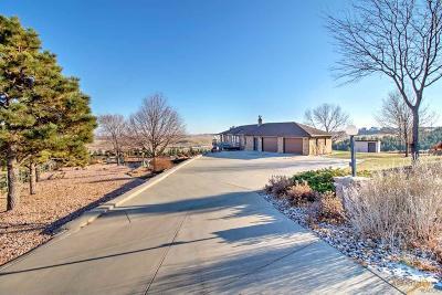 Rapid City Single Family Home For Sale: 1396 Panorama Cir