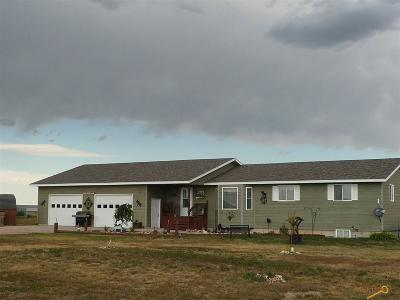 Rapid City Single Family Home For Sale: 22326 Lucky Ln