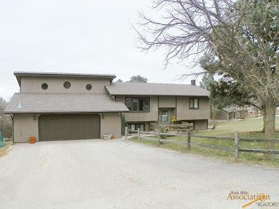 Sturgis Single Family Home For Sale: 8920 N Ridge Trail
