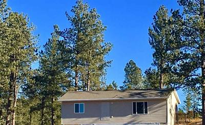 Custer Single Family Home For Sale: 25536 Windsong Valley Rd