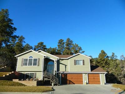 Rapid City Single Family Home For Sale: 3701 City View Dr