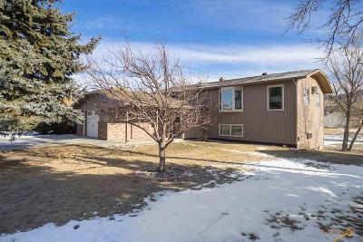 Sturgis Single Family Home For Sale: 2346 S Baldwin