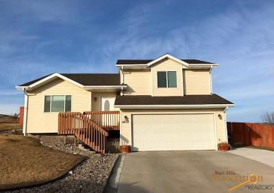 Rapid City, Hermosa, Box Elder, Black Hawk, Rapid Valley, Summerset, Piedmont, Piedmont Valley Single Family Home For Sale: 4602 Ave A