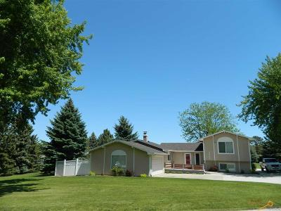 Rapid City Single Family Home For Sale: 4022 Starlite Dr