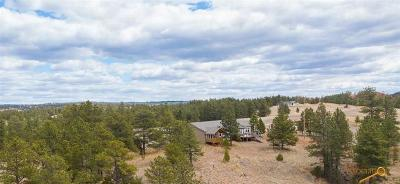 Single Family Home For Sale: 27301 Spirit Canyon Rd