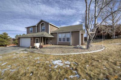 Rapid City Single Family Home For Sale: 3902 Parkridge Dr