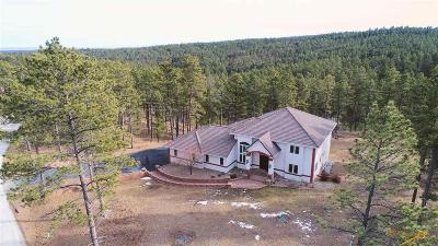 Rapid City Single Family Home For Sale: 23612 Wilderness Canyon Rd