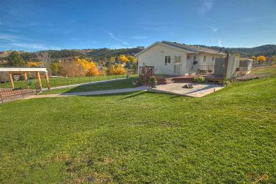 Rapid City Single Family Home For Sale: 2817 Mountain Meadow Rd