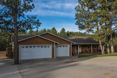 Rapid City Single Family Home For Sale: 975 Penny Ln