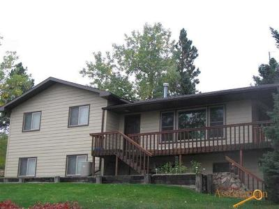 Sturgis Single Family Home For Sale: 1127 Paisley Ter