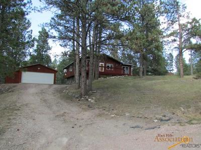 Hill City Single Family Home For Sale: 420 Forest