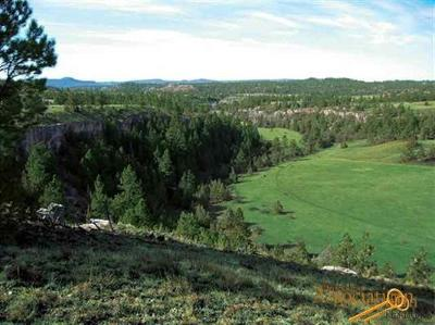 Residential Lots & Land For Sale: Unaddressed Custer County