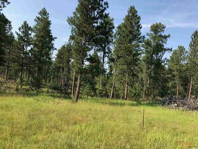 Sturgis Residential Lots & Land For Sale: Lot 12