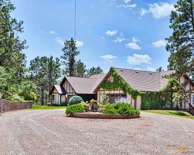 Rapid City Single Family Home For Sale: 3655 Canyon View Ct