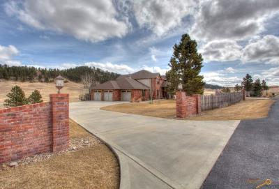 Rapid City Single Family Home For Sale: 13975 Perry Pl