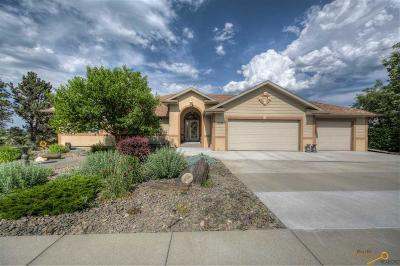 Rapid City Single Family Home For Sale: 3728 City View Dr