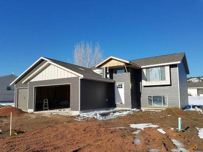 Rapid City Single Family Home For Sale: 4003 Kyle