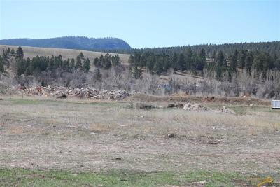 Sturgis Commercial Lots & Land For Sale: 3230 Whitewood Service Rd