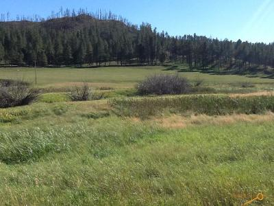 Residential Lots & Land For Sale: Beaver Creek Rd