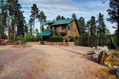 Rapid City Single Family Home For Sale: 13600 Aeronauts Way