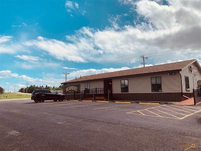 Summerset Commercial For Sale: 7280 Freedom Ln