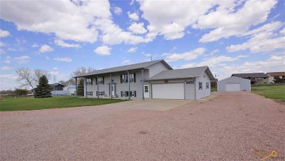 Rapid City Single Family Home For Sale: 4432 Parkview Dr