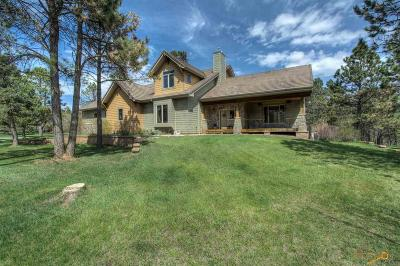 Rapid City Single Family Home For Sale: 23616 Wilderness Canyon Rd