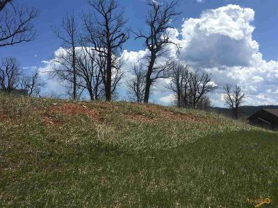 Sturgis Residential Lots & Land For Sale: 12257