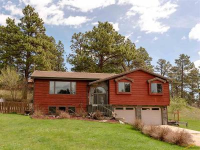 Rapid City Single Family Home For Sale: 1820 Kings Rd