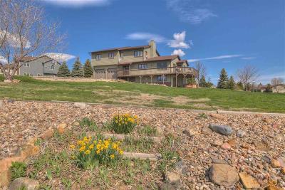 Rapid City Single Family Home For Sale: 1397 Panorama Cir