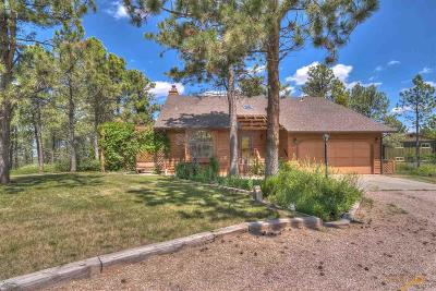 Rapid City Single Family Home For Sale: 6134 Wildwood Dr