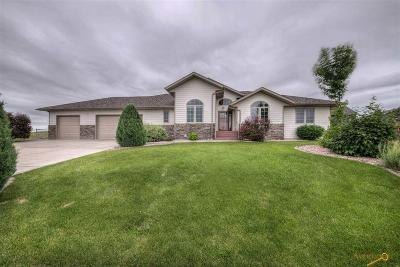 Rapid City Single Family Home For Sale: 3239 Willowbend Rd